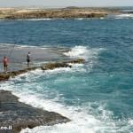 חוף דור - שוניות וסלעים